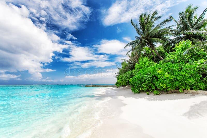 Beau paysage de nature d'île tropicale photographie stock libre de droits