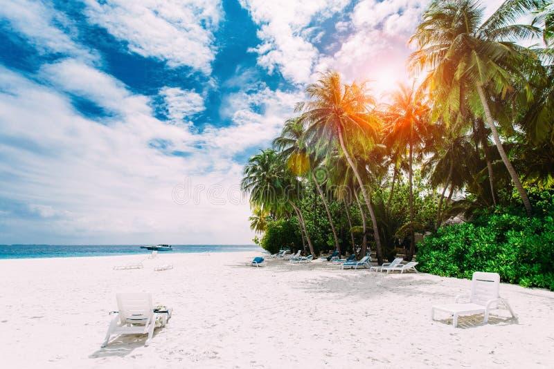 Beau paysage de nature d'île tropicale photos stock