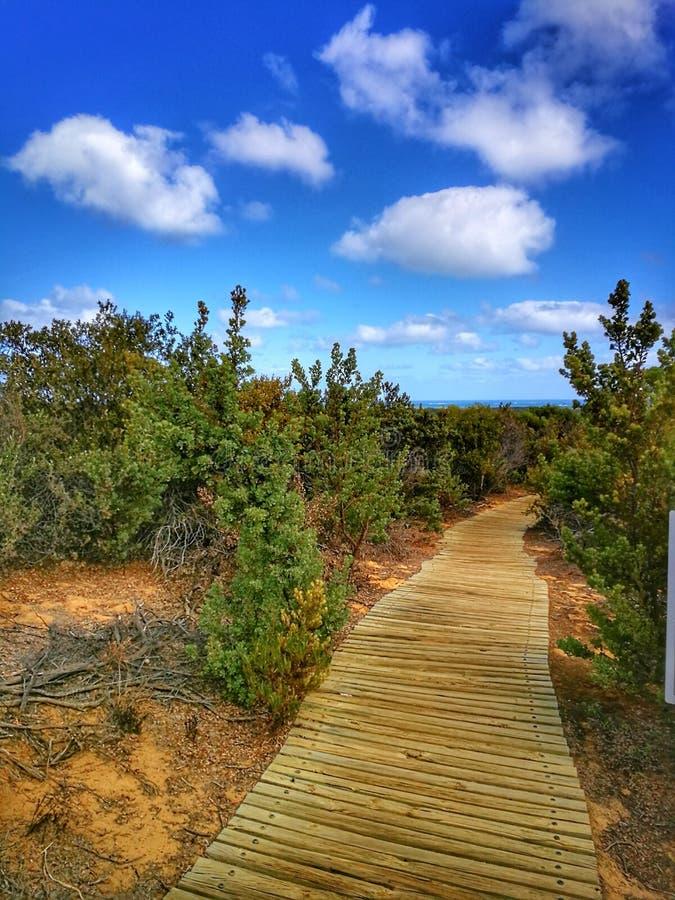 Beau paysage de nature pendant le trekking dans le désert de sommet, Perth, Australie images libres de droits