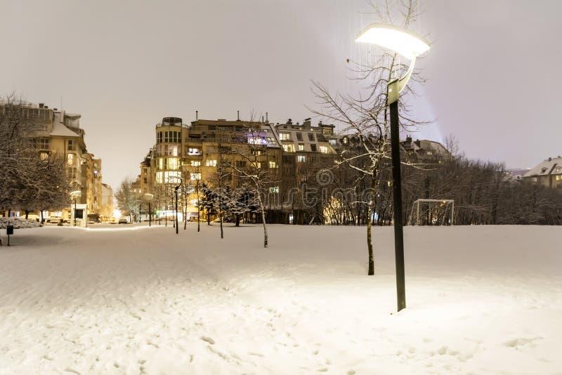 Beau paysage de parc d'hiver de Sofia, Bulgarie par nuit image stock