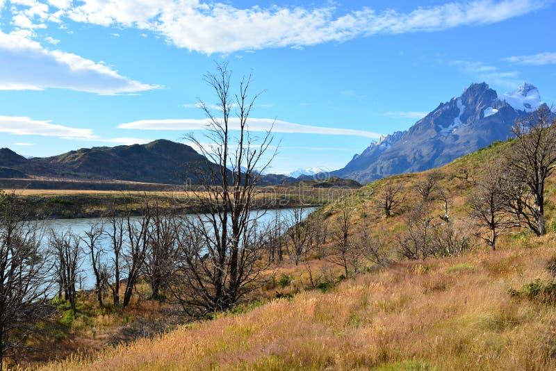 Download Beau Paysage De Parc National De Torres Del Paine, Chili Photo stock - Image du inside, gris: 87702236