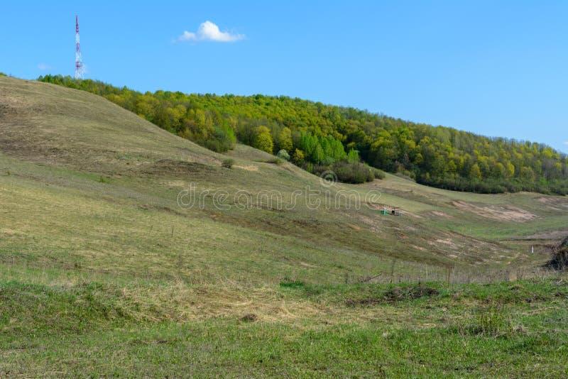 Beau paysage de ressort : arbres, forêt, montagnes, collines, champs, prés et ciel bleu image libre de droits
