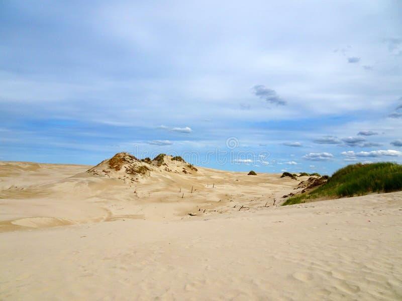 """Beau paysage des dunes en parc national de ski de """"d'owiÅ de 'de la Pologne SÅ photos stock"""