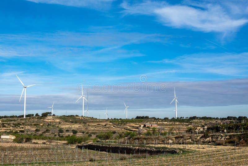 Beau paysage du groupe de moulins à vent photographie stock libre de droits