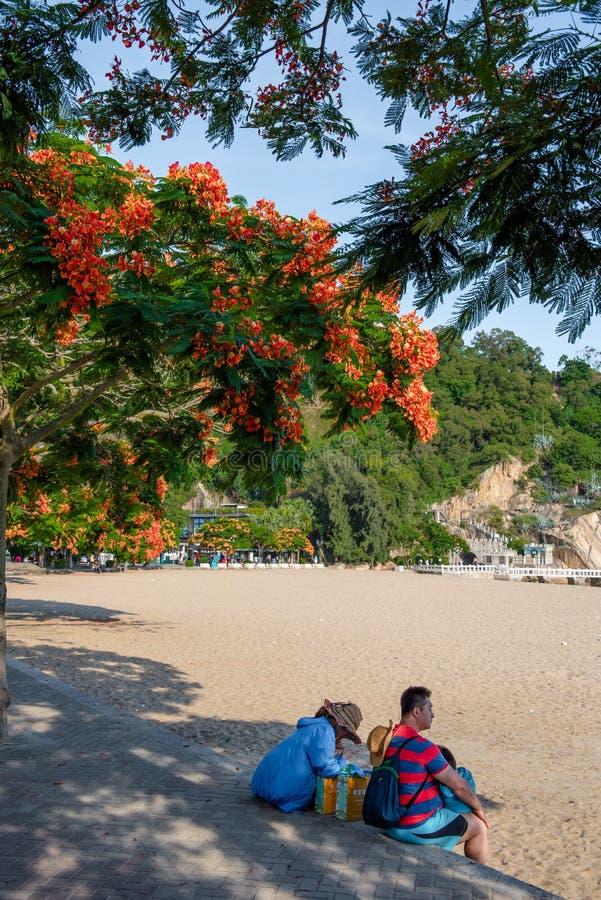 Beau paysage en île de Gulang image libre de droits