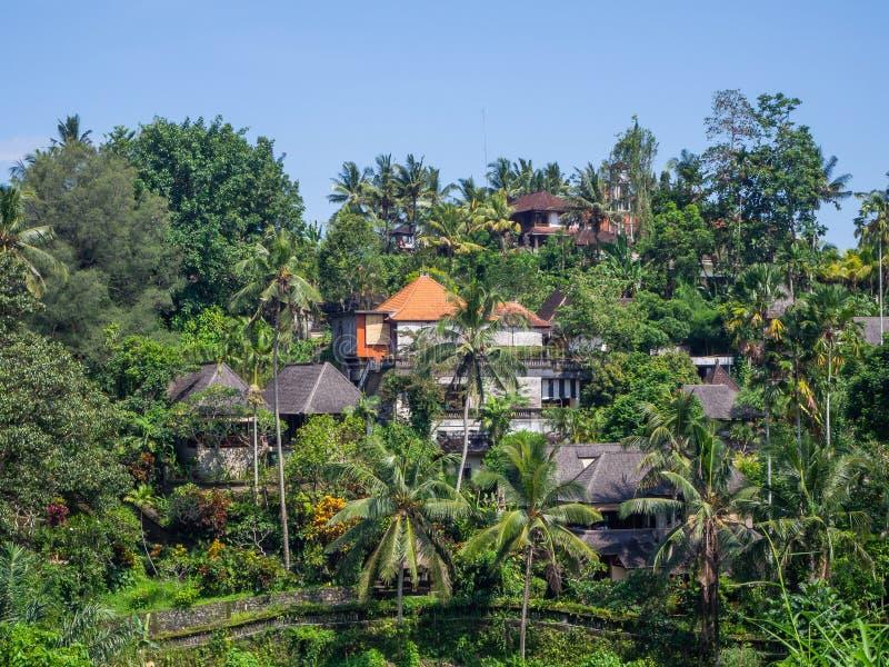 Beau paysage en Indon?sie photo stock