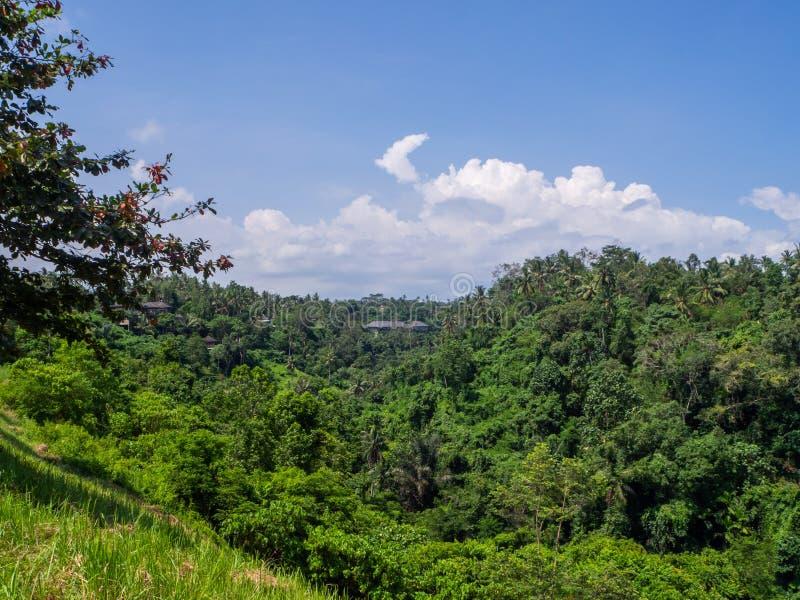 Beau paysage en Indon?sie images libres de droits