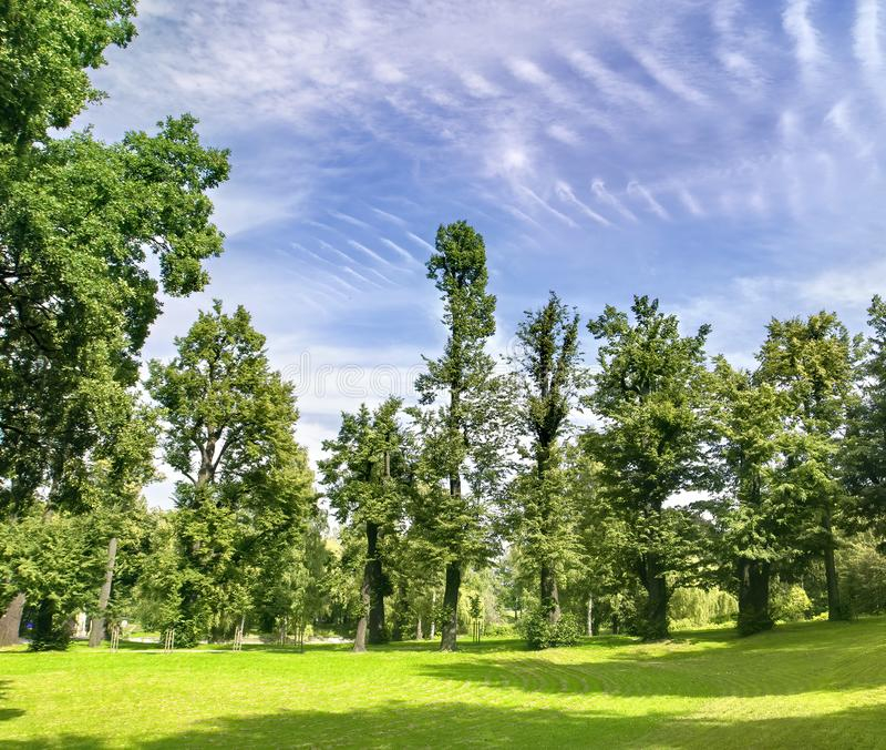 Beau paysage en Pologne du sud près de Walbrzych images libres de droits