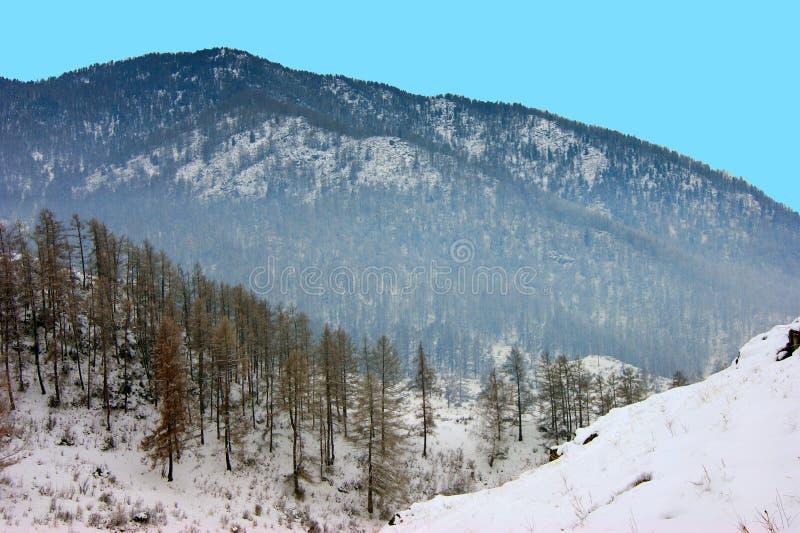 Beau paysage hivernal des montagnes recouvertes photo stock