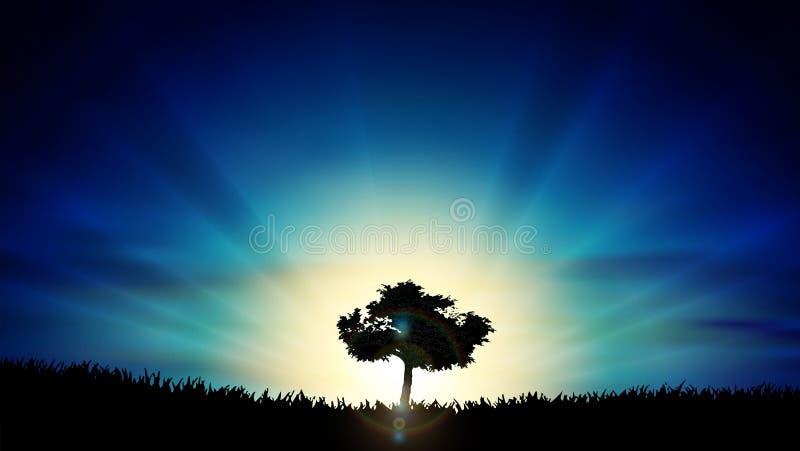 Beau paysage jaune de nature de silhouette d'arbre de solitude de coucher du soleil illustration stock