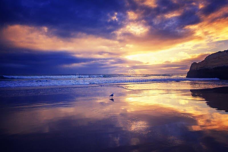 Beau paysage magique renversant d'océan, côte du Portugal, t image stock