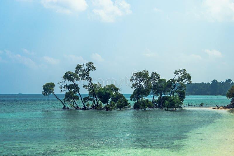 Beau paysage marin d'une île tropicale exotique dans l'Océan Indien photos libres de droits