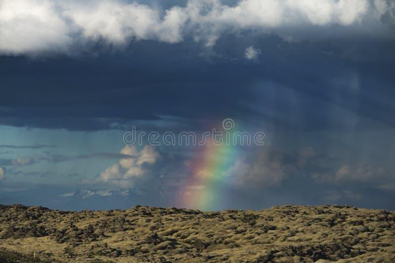 Beau paysage moussu volcanique en Islande au-dessus du Raindbow à l'été image libre de droits
