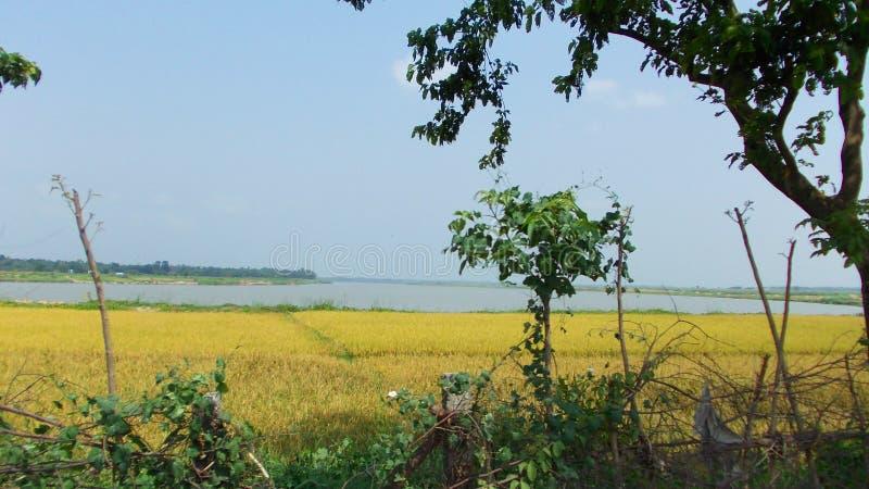 Beau paysage naturel de village photo stock