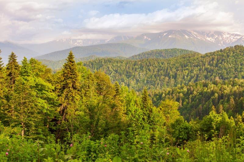 Beau paysage naturel des montagnes de Caucase du nord le soir photos libres de droits