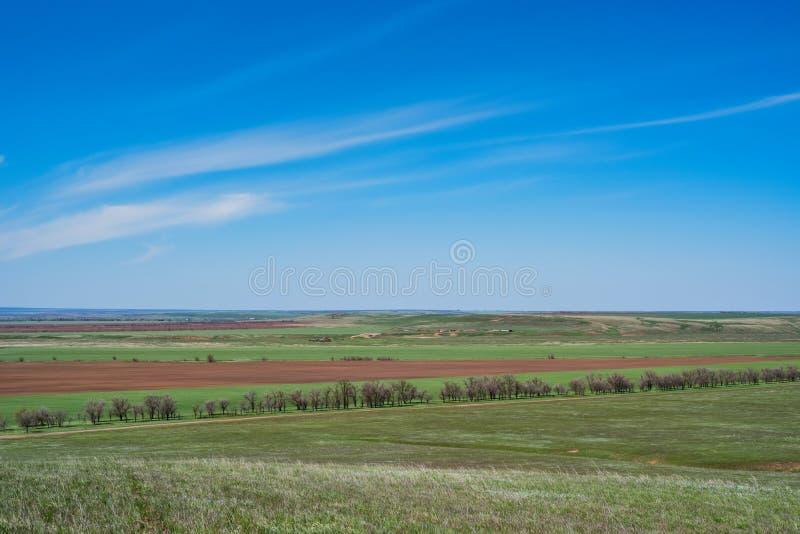 Beau paysage pittoresque de ressort avec la steppe verte photographie stock