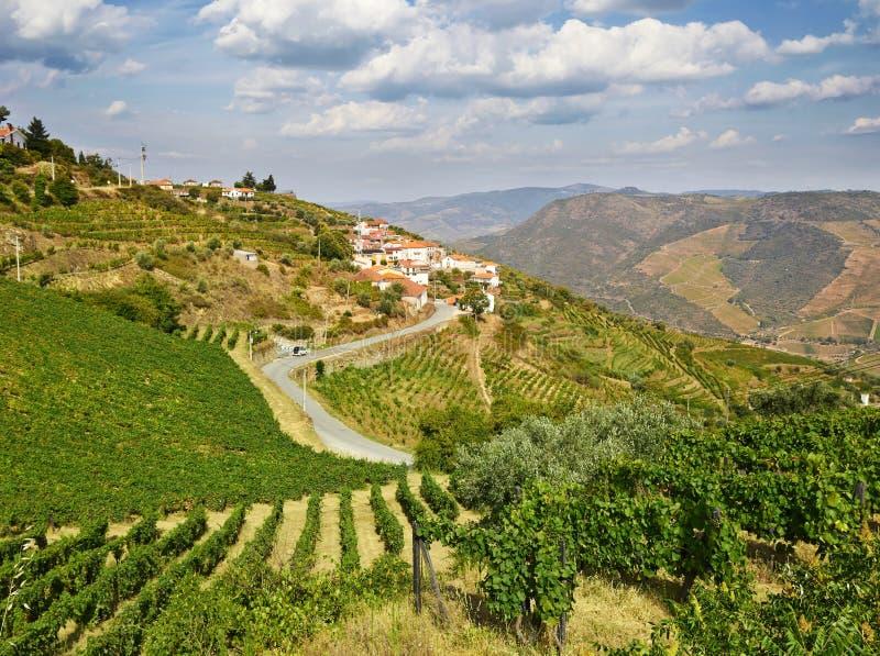 Beau paysage rural dans la région de Douro image stock
