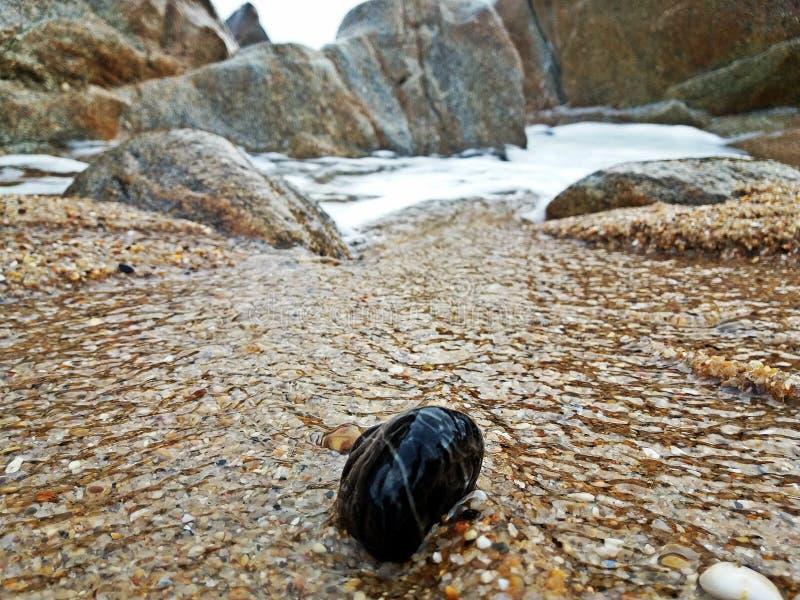 Beau paysage sur la plage photos libres de droits