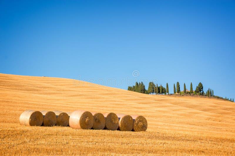 Beau paysage typique de ` Orcia de Val d en Toscane avec des balles de foin dans un domaine en été, ` Orcia, Toscane Italie de Va photos libres de droits