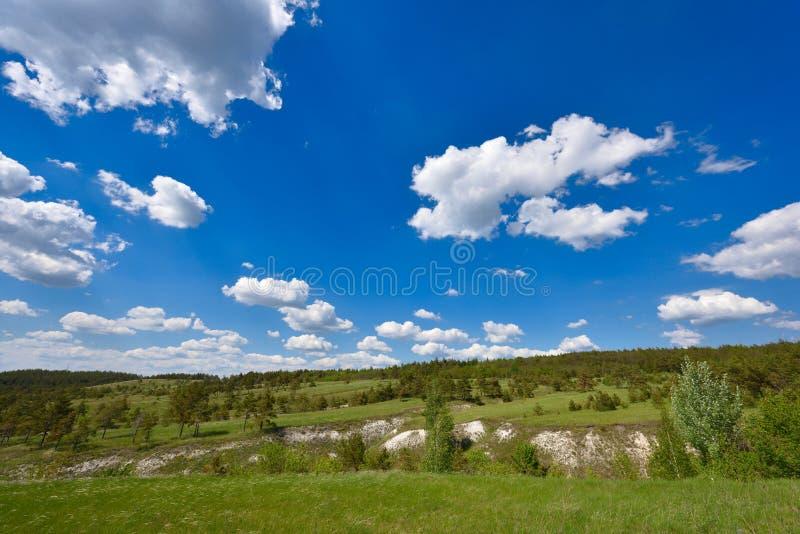 Beau paysage, une colline avec des pins et un ciel bleu avec des nuages images stock