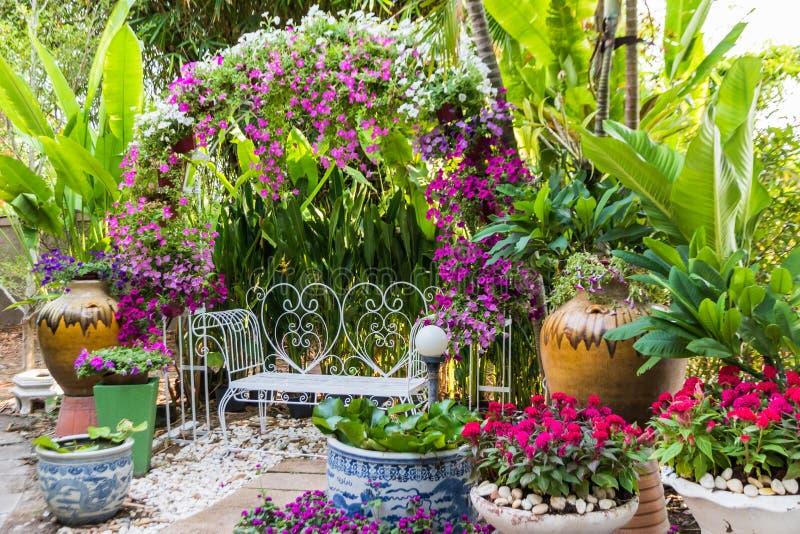 Beau petit jardin photos stock