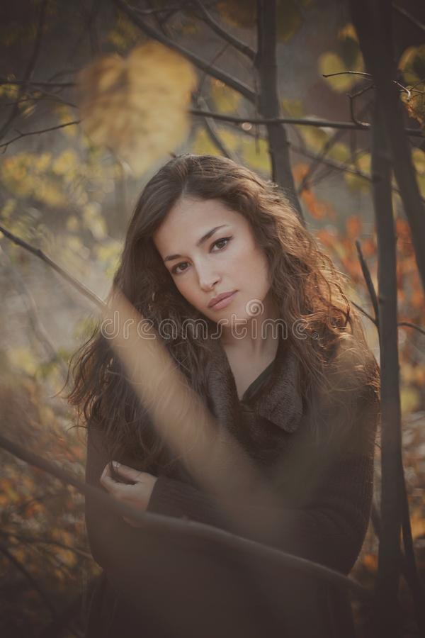 Beau portrait d'automne de jeune femme dans la forêt photos stock