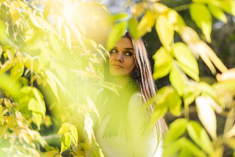 beau portrait de femme extérieur avec le backgrou tôt de parc d'automne photographie stock