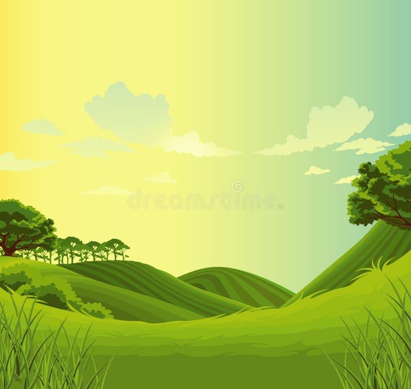 Beau pré de vert de paysage illustration stock