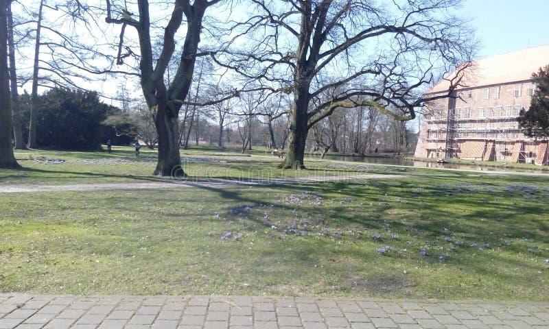 Beau ressort en Winsen, arbres et fleurs photos stock