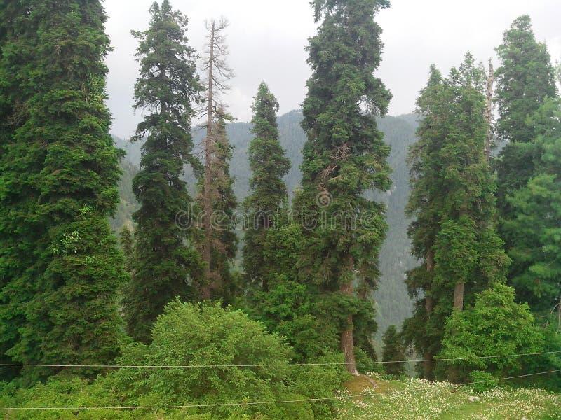 Beau scenary naturel du Pakistan photographie stock