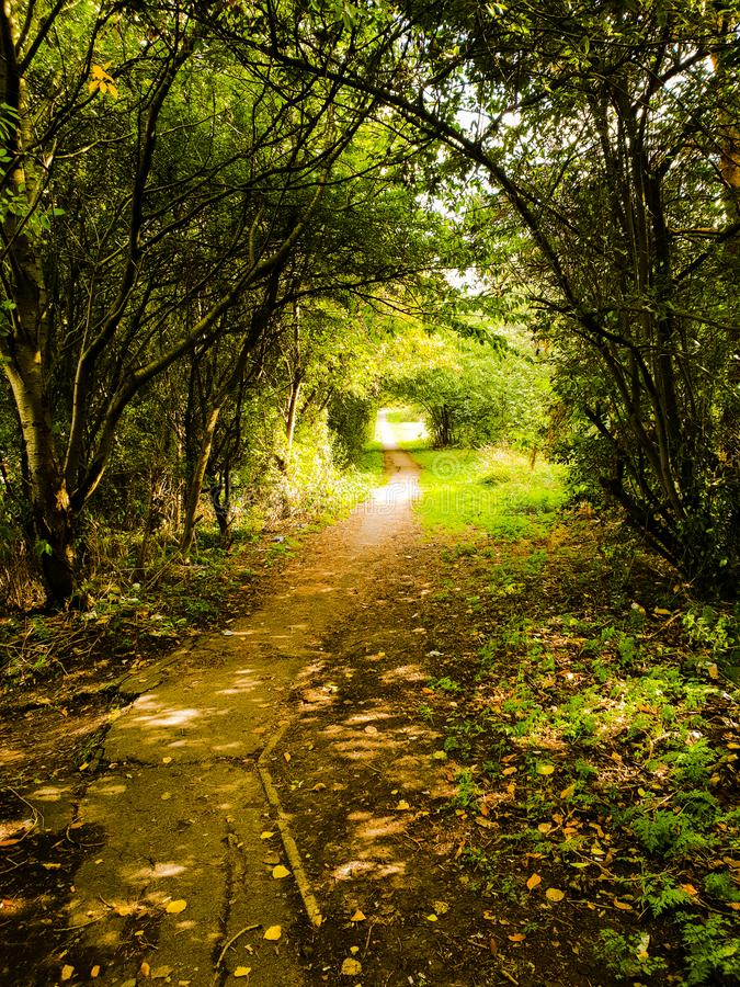 Beau sentier piéton pendant l'automne amenant à un parc, Londres, R-U photos stock