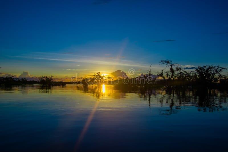 Beau silhouetté contre un ciel orange au coucher du soleil au-dessus de Laguna grand en parc national de Cuyabeno, en Equateur photo libre de droits
