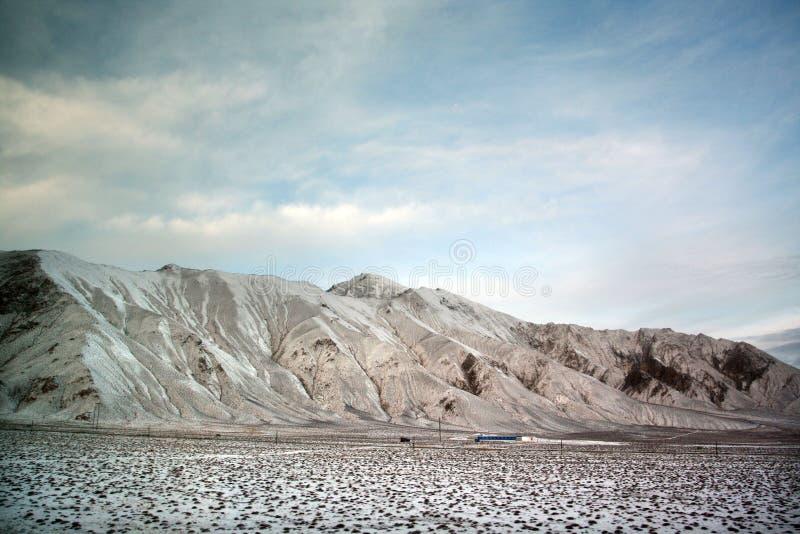 beau Tibétain de plateau photo stock