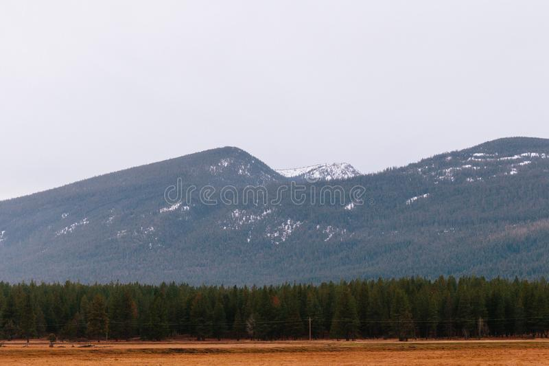 Beau tir d'un champ sec avec la verdure et les hautes collines et montagnes rocheuses photo libre de droits