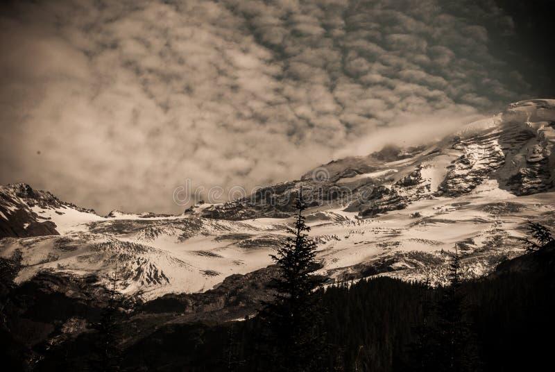 Beau tir foncé d'une colline neigeuse avec un pin simple et un ciel nuageux stupéfiant image libre de droits