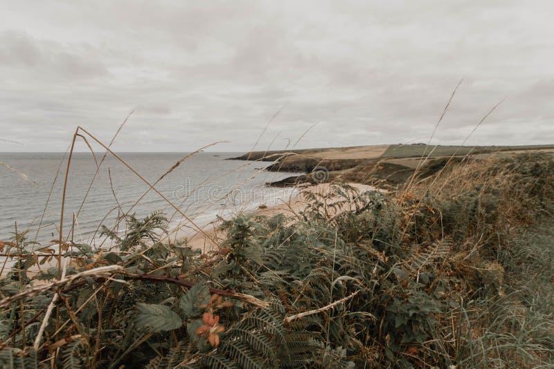 Beau tir large de l'océan et de la verdure sur le rivage avec stupéfier le ciel nuageux photos libres de droits
