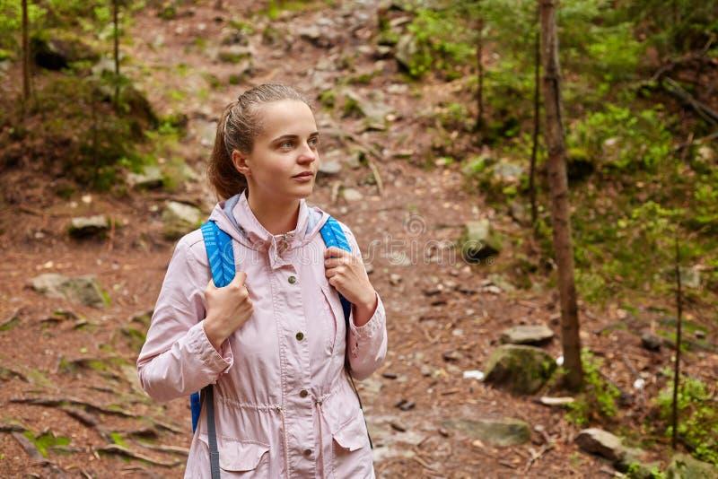 Beau touriste magnétique regardant de côté, posant autour des chemins forestiers et des arbres, étant en optimismes, appréciant d photo libre de droits