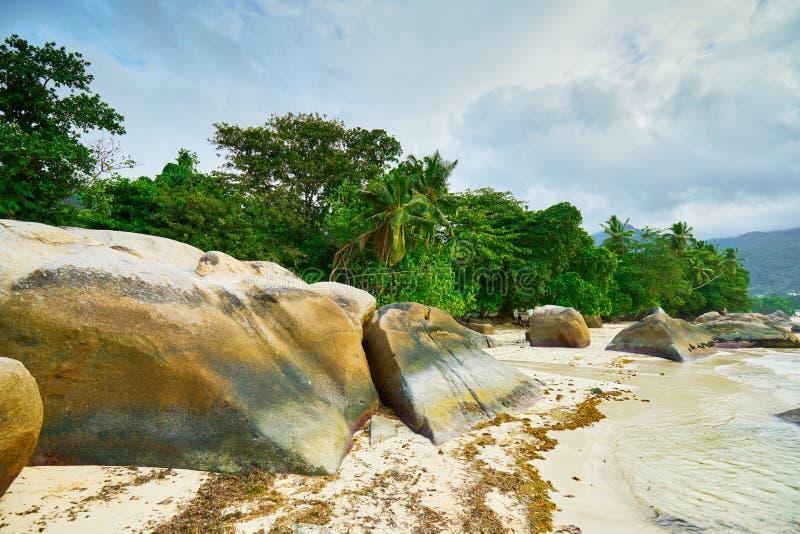 Beau Vallon Bay met granitrotsen - Strand op eiland Mahe in Seychellen stock foto's