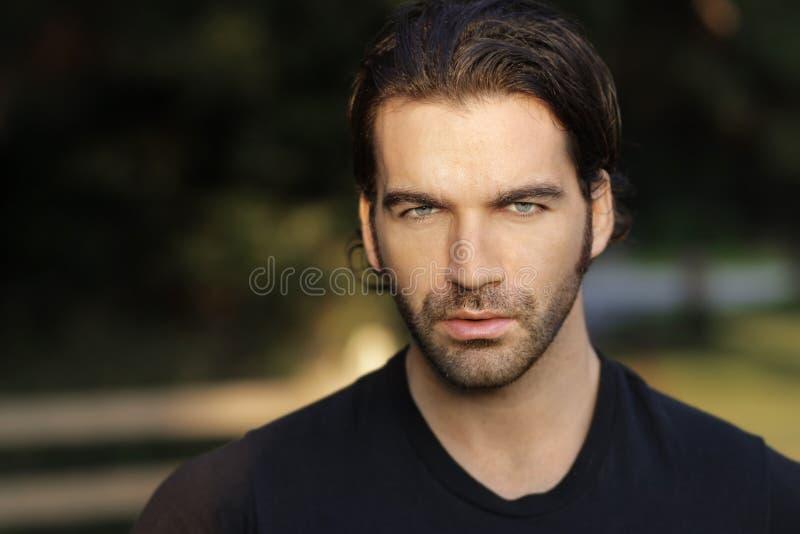 Beau visage d'homme image stock