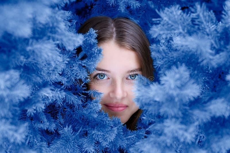 Beau visage de filles parmi les branches bleues de sapin photos libres de droits