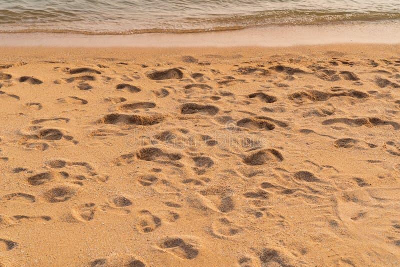 Beaucoup d'empreintes de pas sur le fond de plage photos stock