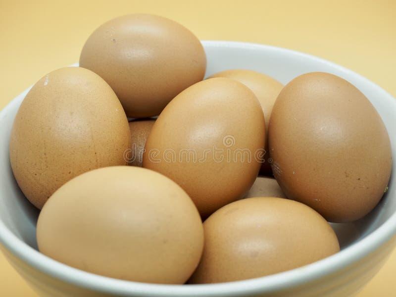 Beaucoup d'oeufs de Brown de poulet dans la cuvette blanche avec le fond orange photo libre de droits