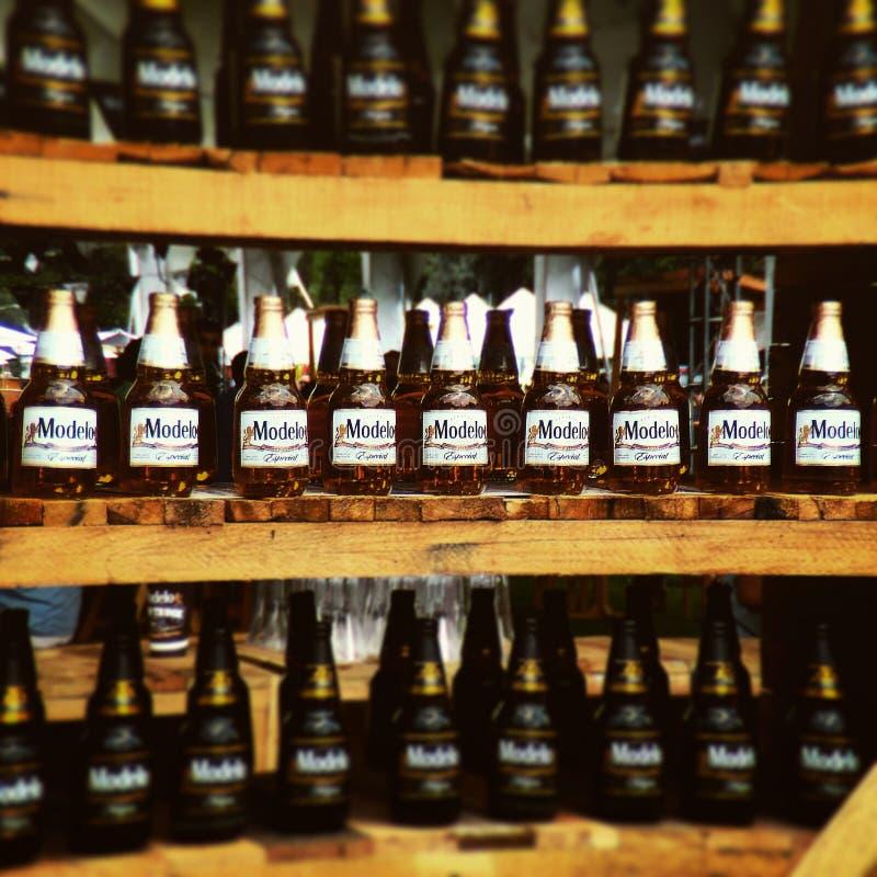 Beaucoup de bières de Modelo placées dans quelques supports en bois images stock