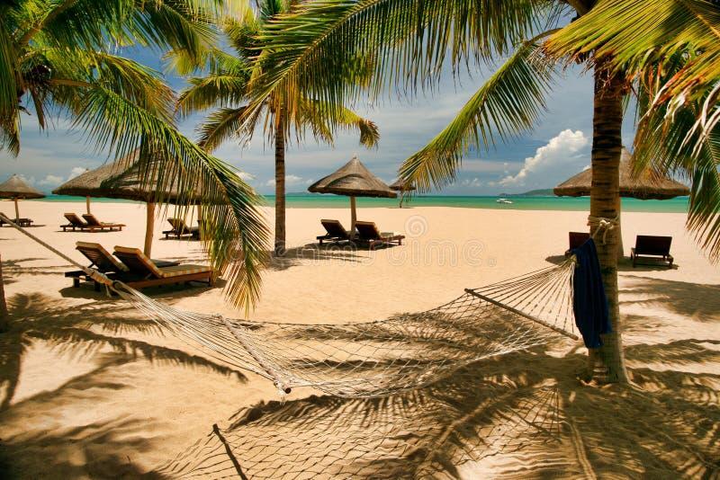 Beaucoup de canapés vides du soleil sous des palmiers louches et un hamac sur la plage de l'île de Hainan image stock