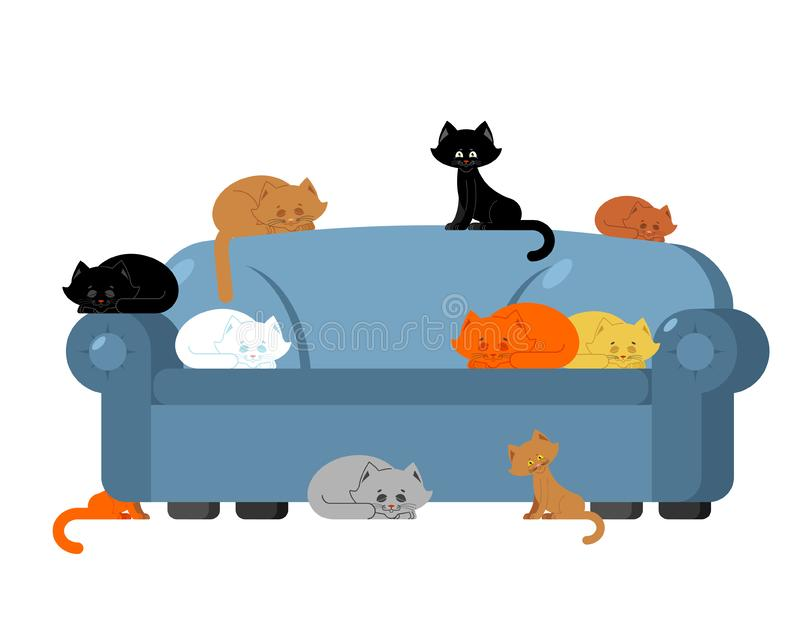 Beaucoup de chats sur le divan chatons sur le sofa Dame de chat de meubles illustration libre de droits