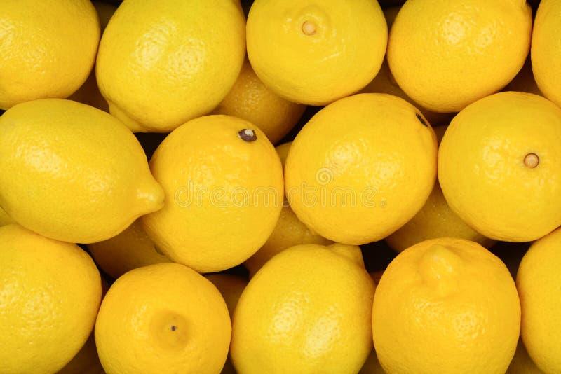 Beaucoup de citrons juteux dans la boîte Fond de citrons images stock