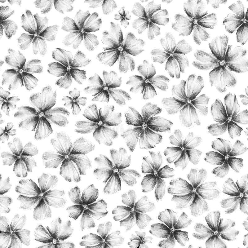Beaucoup de fleurs tirées par la main d'abrégé sur différent taille sur le fond blanc illustration libre de droits