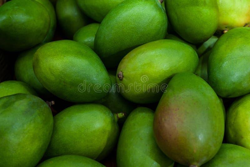 Beaucoup de fruit vert de mangue est idéal pour le fond image stock