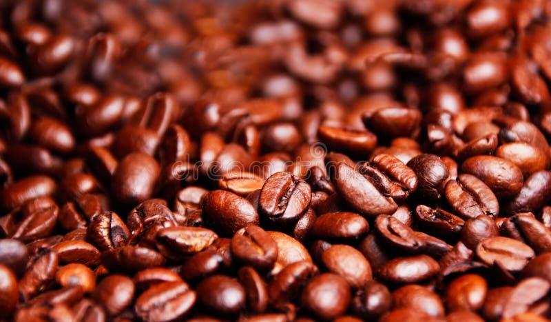 Beaucoup de grains de café, vous incite à vouloir avoir une tasse de café photo stock
