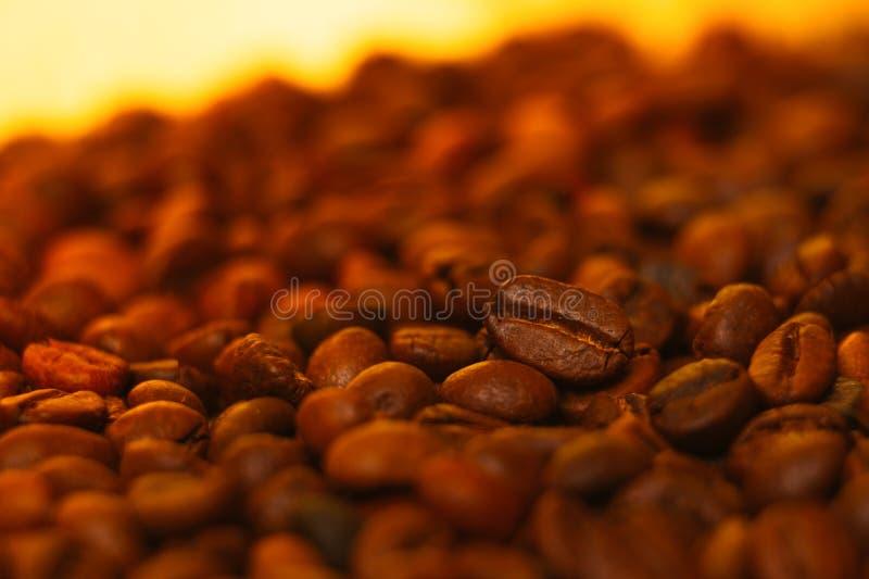 Download Beaucoup De Grains De Café à L'arrière-plan Brouillé Photo stock - Image du fond, brésilien: 76082680